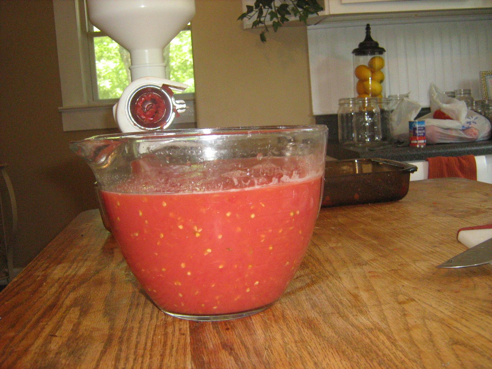 Scarlett's Salsa Recipe